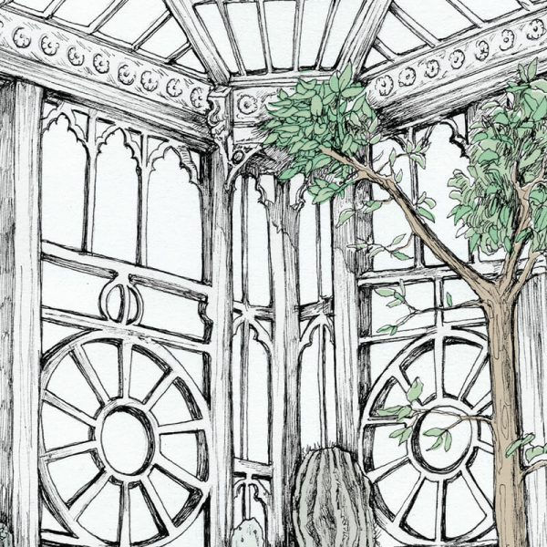 close up of conservatory greenhouse and cacti drawing