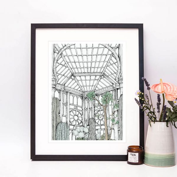 framed drawing of a conservatory with cacti
