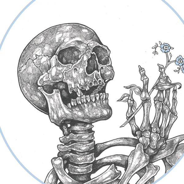 skeleton drawing holding a forget me not